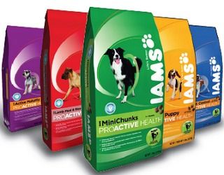 IAMs for Cats & Dogs