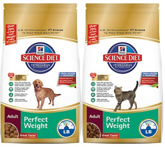 Hills Science Diet for Cats & Dogs